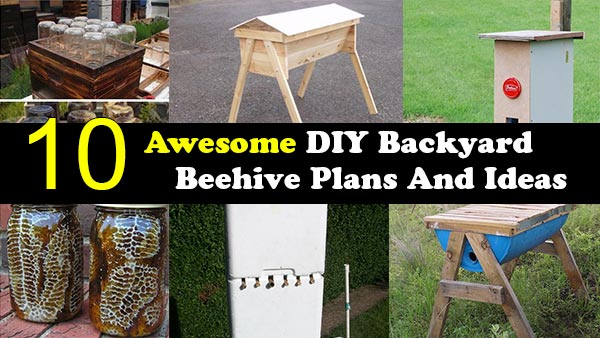 10 Awesome DIY Backyard Beehive Plans And Ideas