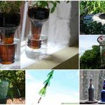 13 Ways To Reuse Wine Bottles In Your Garden