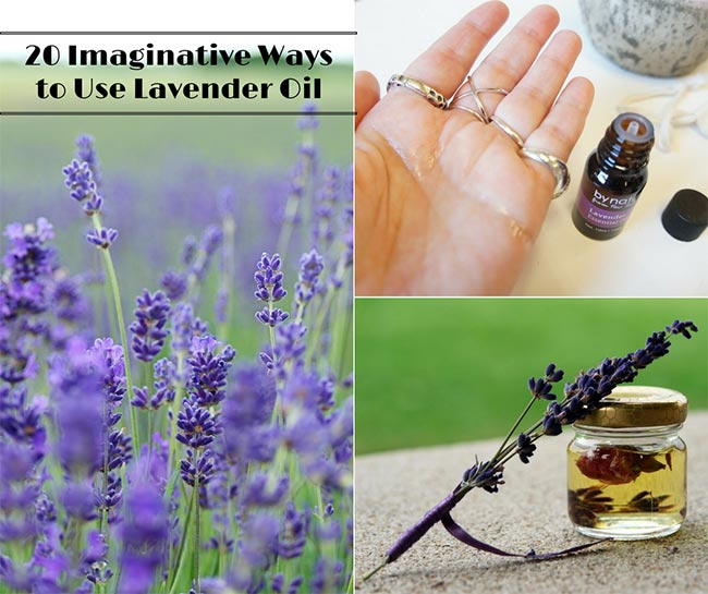 20 Creative Ways to Use Lavender Oil