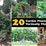20 Garden Plants To Grow Vertically This Year