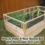 How To Make A Neat Raised Bed With Removable Pest Gate