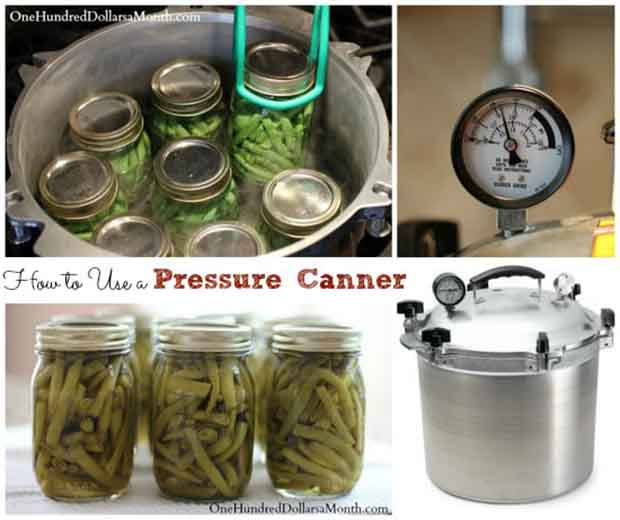Beginners Guide To Using A Pressure Canner