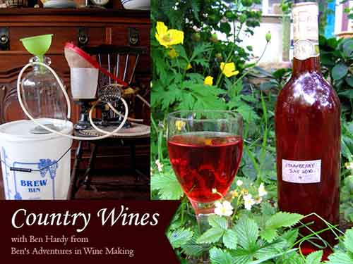 DIY Homesteading - Making Your Own Country Wines