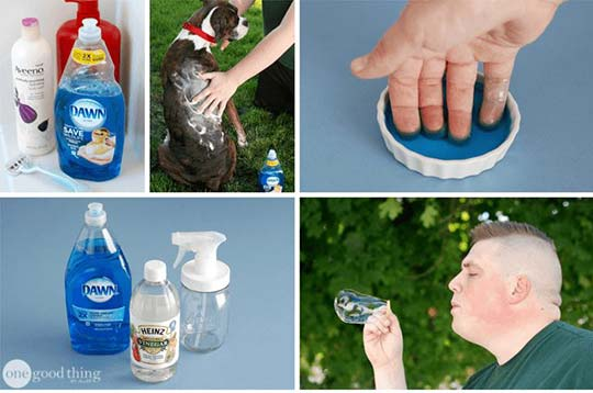 28 Dawn Dish Soap Uses That Will Make Your Life Easier
