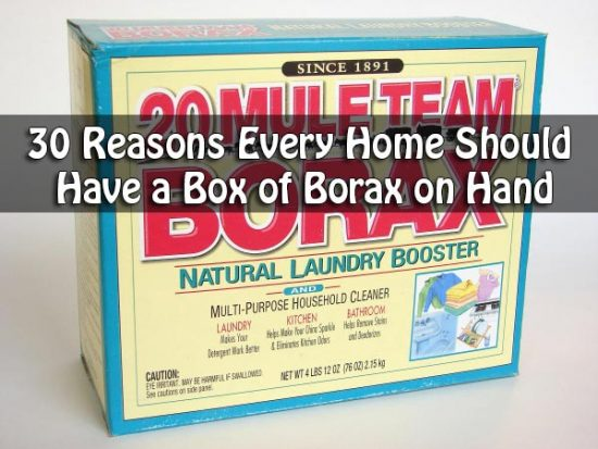 30 Reasons Every Home Should Have a Box of Borax on Hand