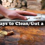 4 Ways to Clean/Gut a Fish