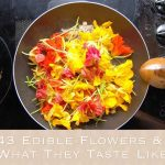 43 Edible Flowers & What They Taste Like