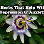 Herbs That Help With Depression & Anxiety