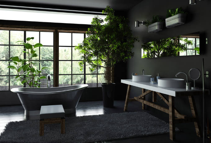 6 Indoor Plants for humidity