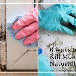 6 Natural Ways to Bust your Mold and Mildew