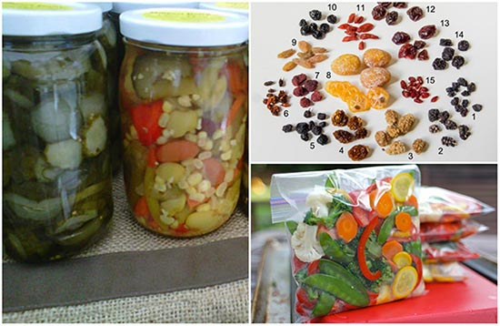 6 Ways to Preserve Your Fruit and Vegetable Harvest