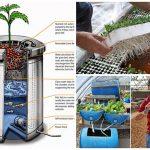 Aquaponics System Using A 55 Gallon Bucket
