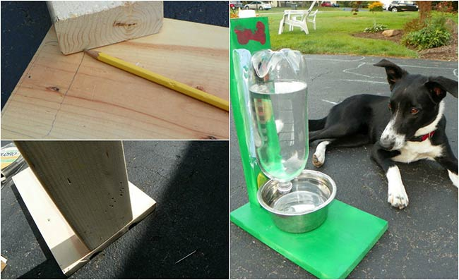 Auto Filling Water Bowl For Dogs & Cats