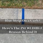Blue Strip On a Curb? Here's The INCREDIBLE Reason Behind It