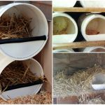 Budget Chicken Nesting Boxes