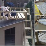 How To Build A Dog House With A Top Deck