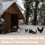 Building a Pallet Wood Hen House Chicken Coop