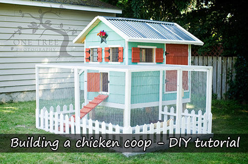 Building a chicken coop – DIY tutorial