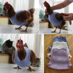 Collection Of Free Chicken Sweater Patterns