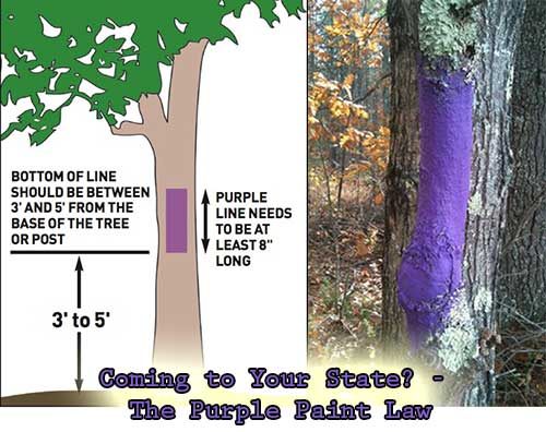 Coming to Your State? - The Purple Paint Law