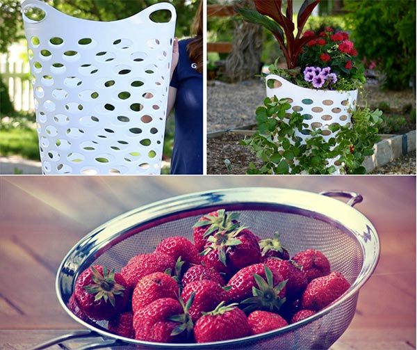 Make This Strawberry Planter From A Laundry Basket