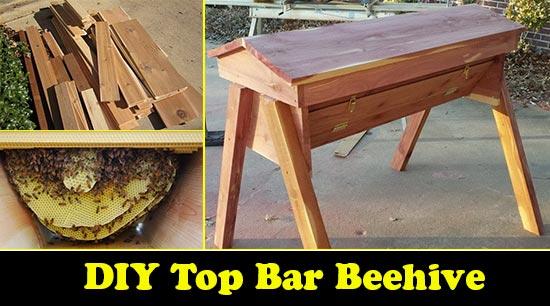 Build Your Own DIY Top Bar Beehive