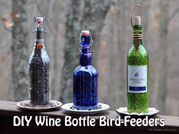 Wine Bottle Bird-Feeders