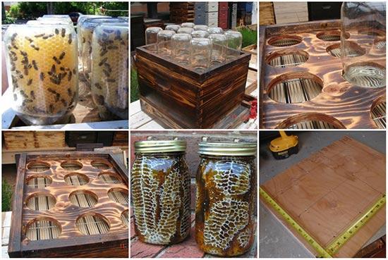 Do-It-Yourself Honey Comb Jar Pots