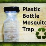 Easy DIY Plastic Bottle Mosquito Trap