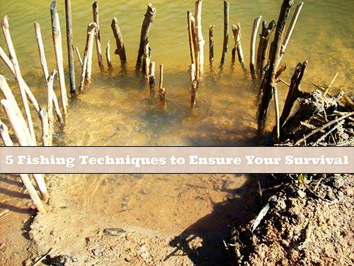 5 Fishing Techniques to Ensure Your Survival