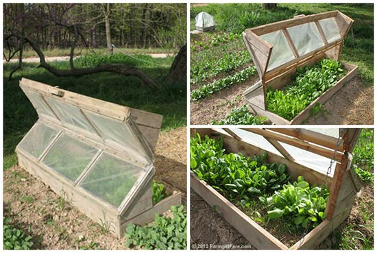 Garden Inspiration: Build an Amish Cold Frame
