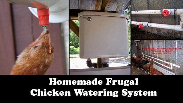 Homemade Frugal Chicken Watering System