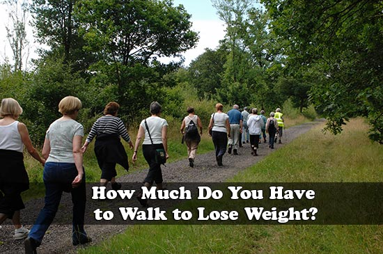 How Much Do You Have to Walk to Lose Weight?