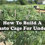 How To Build A Tomato Cage For Under $2