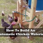 How To Build An Automatic Chicken Waterier