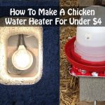 How To Make A Chicken Water Heater For Under $4