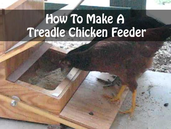 How To Make A Treadle Chicken Feeder