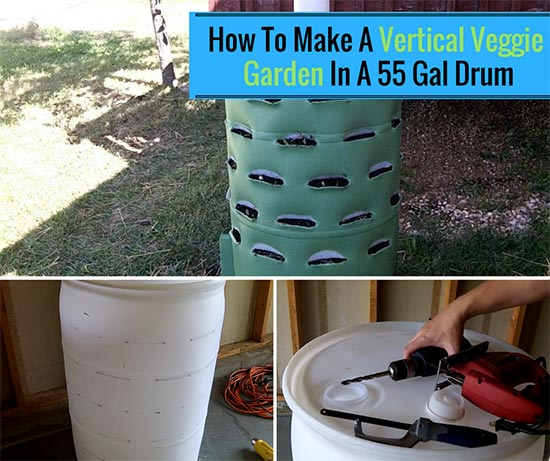 How To Make A Vertical Veggie Garden In A 55 Gal Drum