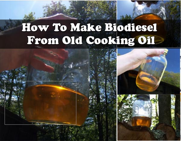 How To Make Biodiesel From Old Cooking Oil