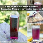 How To Make: Lavender Soda + Lavender Syrup + Lavender Lemonade