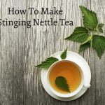 How To Make Stinging Nettle Tea