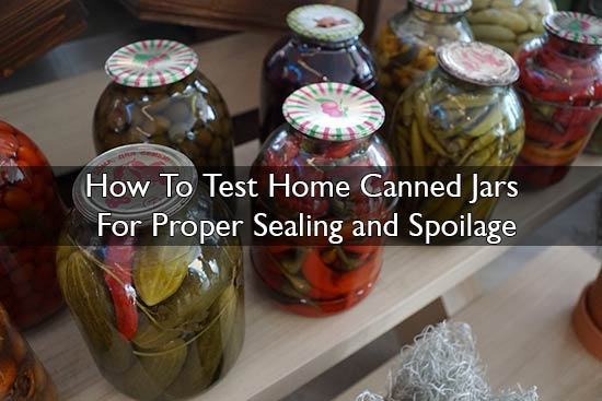 How To Test Home Canned Jars For Proper Sealing and Spoilage