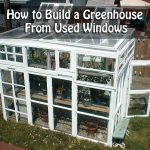 How to Build a Greenhouse from Used Windows