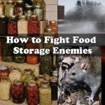 How to Fight Food Storage Enemies