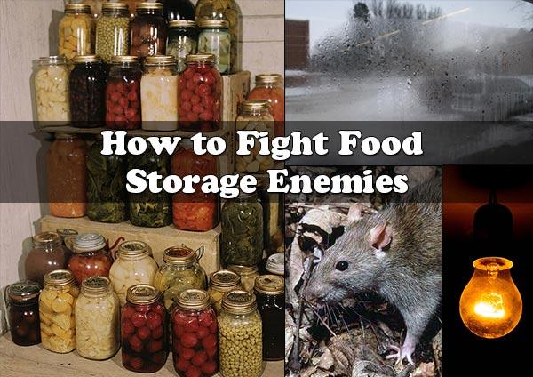 How to Fight Food Storage Enemies
