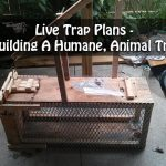 Live Trap Plans - Building A Humane, Animal Trap