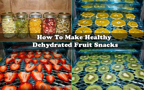 is dry fruit healthy how to make healthy fruit snacks