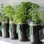 How To Make A Mason Jar Herb Garden