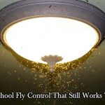 Old School Fly Control That Still Works Today