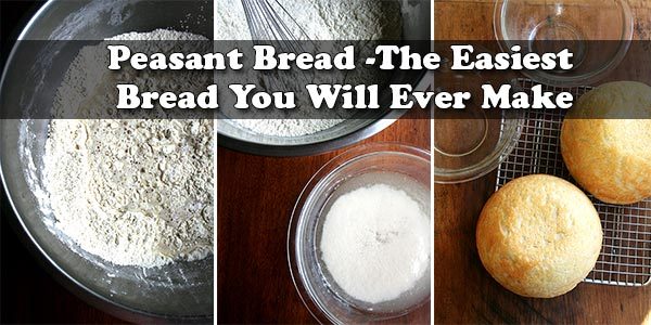 Peasant Bread -The Easiest Bread You Will Ever Make